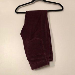 Burgundy LOFT Corduroy Pants